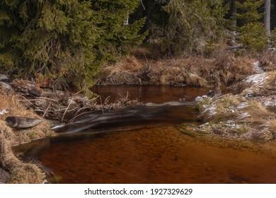 Svetla creek in winter snowy cold morning with sunshine color light - Shutterstock ID 1927329629