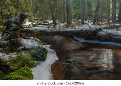 Svetla creek in winter snowy cold morning with sunshine color light - Shutterstock ID 1927329632