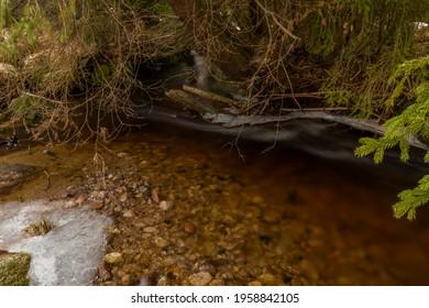 Svetla creek in winter snowy cold morning with sunshine color light - Shutterstock ID 1958842105