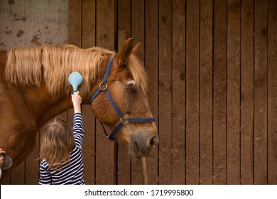 Svojek, Czech Republic - April 25th 2020: Kids caring about horses near rural old wooden farm in spring time.
