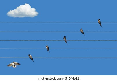 swallows on  wires in a blue sky or Musical Staff with notes
