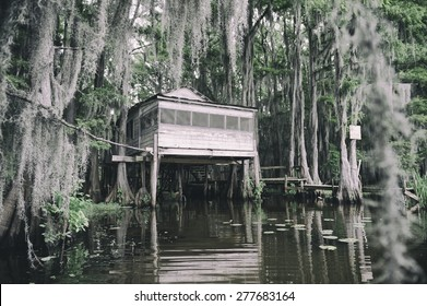Swamp bayou scene of the American South featuring old wooden shack built into bald cypress trees and Spanish moss in Caddo Lake Texas