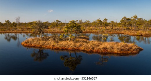 swamp lake wit islands and reflections,