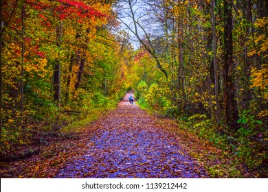 Swamp Rabbit Trail during Autumn in Downtown Greenville South Carolina SC
