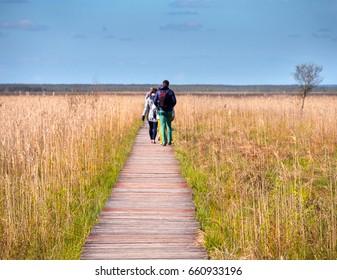 Swamp Biebrza?skie tourists on the trail
