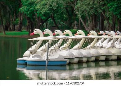 Swan pedal boat parking on pier. Lumpini park. Bangkok, Thailand.