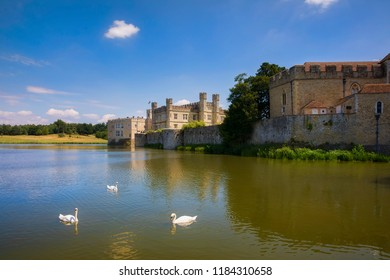 Swans in the Lake Sorrounding Leeds Castle in Kent, England
