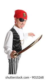 A swashbuckling pirate brandishing a long sword.
