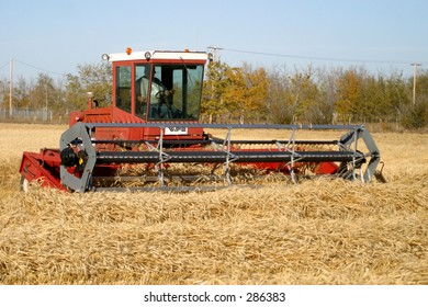 swather in the field