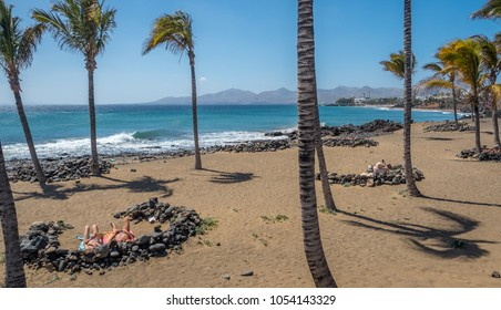 Swaying tall palm trees dot the yellow sand of Playa Grande, Puerto del Carmen, Lanzarote. Sunbathers lie amongst the curved lava windbreaks. Azure blue sea, mountains and clear sky fill the backdrop