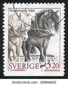 SWEDEN - CIRCA 1994: stamp printed by Sweden, shows North sweden horse, circa 1994