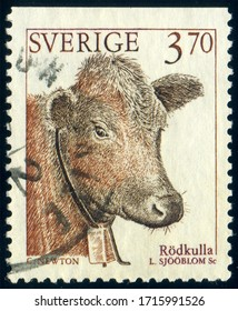 SWEDEN - CIRCA 1995: stamp 3.70 Swedish crowns printed by Sweden, shows domestic animal Red poll cow (Bos primigenius taurus), circa 1995