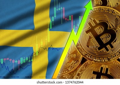 Sweden flag and cryptocurrency growing trend with many golden bitcoins