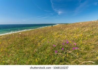 Swedish coast to the south - Hammars backar in summer time