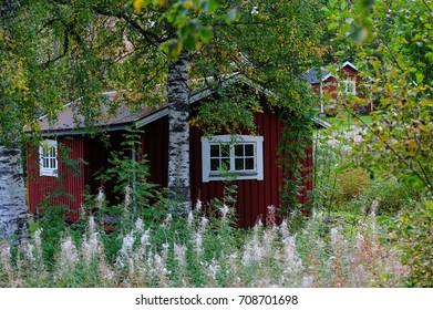 Swedish cottage in autumn, cabin, hamra