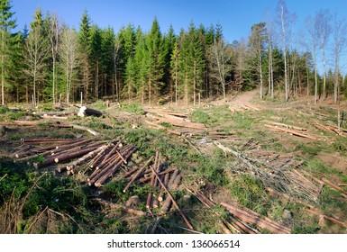 Swedish deforestation