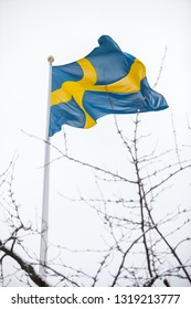 The Swedish flag against a white, overcast sky, with twigs from a cherry tree in front.