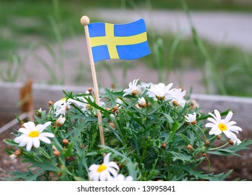 Swedish flag among the green plants