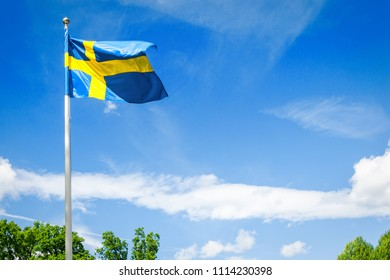 Swedish flag on the natural background
