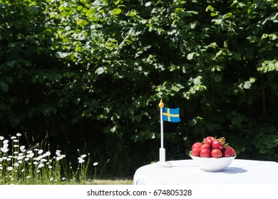 Swedish fresh strawberries and a miniature flag in a garden with blossom white flowers