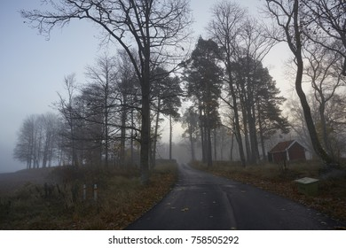 Swedish house in the fog