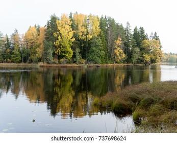 Swedish natural Salmon area in autumn. Farnebofjarden national park