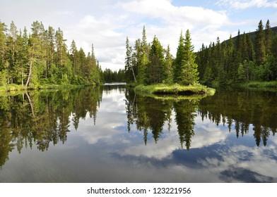 Swedish natural salmon area in summer