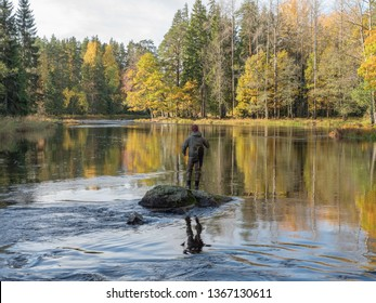 Swedish river and natural salmon area in autumn.