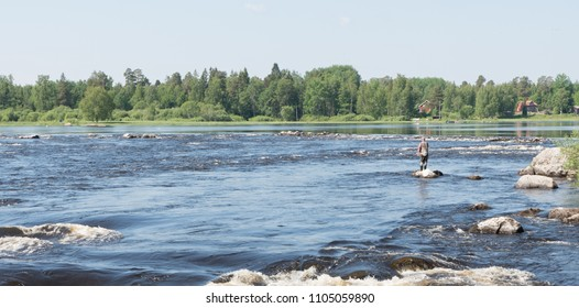 Swedish river and Salmon area in spring. Farnebofjarden national park in Sweden.
