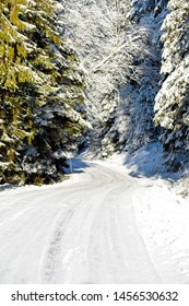 Swedish snowy forest winter road