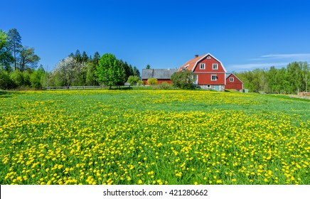 Swedish spring scenery