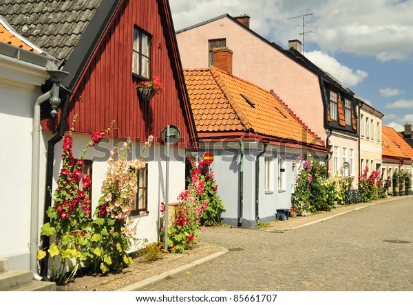 Swedish Village Alley With Doors and Plants, Ystad