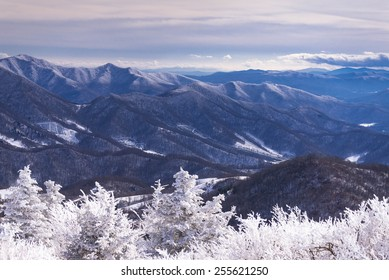 A sweeping view of the snow-covered Blue Ridge Mountains from the round bald at Roan Mountain.