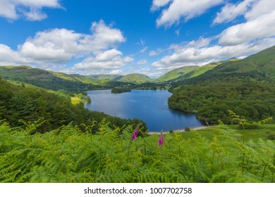Sweeping vista of Lake Grasmere in the Lake District, UK on a sunny spring day.  Blue sky with puffy white clouds and foxglove flowers in the foreground.