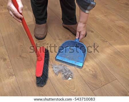 Sweeping Wooden Laminate Floor Brush Shovel Stock Photo Edit Now
