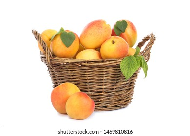 Sweet apricots in basket isolated on white background