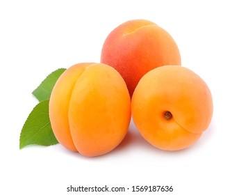 süße Aprikosen einzeln auf weißem Hintergrund.