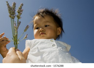 sweet baby girl lifted in the air, reaches for lavender