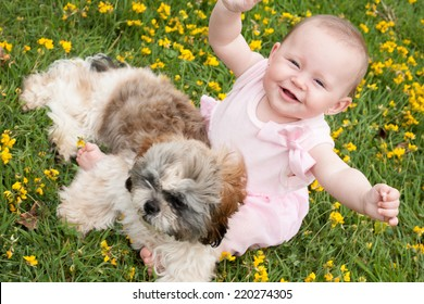 Sweet baby girl and puppy in a field of buttercups