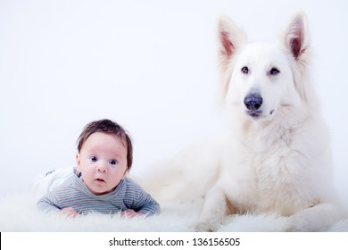 sweet baby and his friend, a swiss white shepherd dog