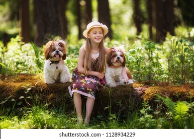 Sweet beautiful girl 7 years old hugs two identical Shih Tzu dogs on a clearing in the forest