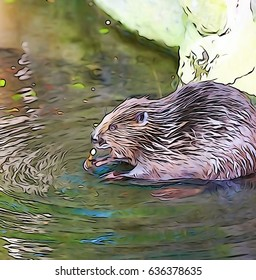 Sweet beaver chewing at a stick in water shot with camera set to illustration mode