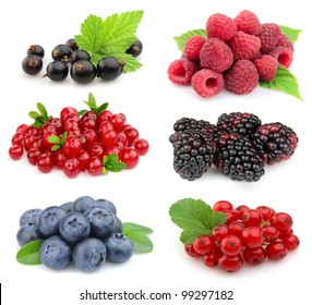 Sweet berries: blackberry,blueberry,red currant,raspberry,black currant,cranberries