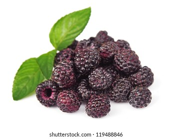 Sweet black raspberry with leafs on white.Garden berry
