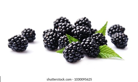 Sweet blackberries on the white background.