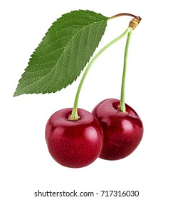 Sweet cherry berry, two on a branch with leaf isolated on white background. Clipping Path. Full depth of field.