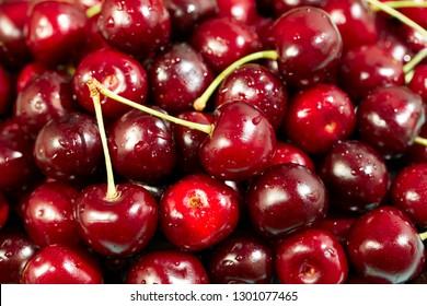 Sweet cherry in water drops