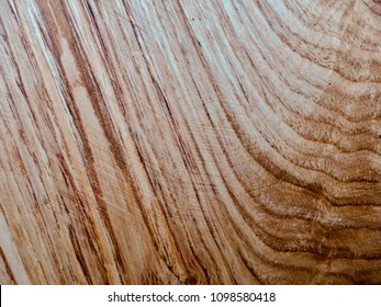 Sweet Chestnut tree wood grain closeup