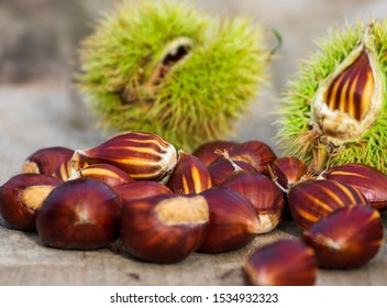 sweet chestnuts in bowl on wooden background in warm sunset light