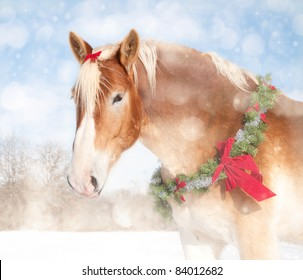 Sweet Christmas themed image of a Belgian draft horse with a wreath and bow